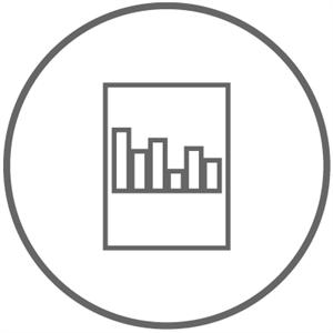 Lizenz Plugin Report