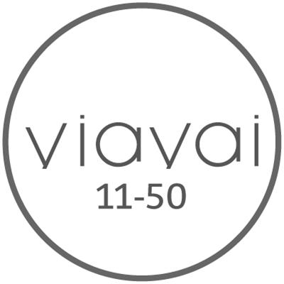 Contrôle d'accès VIAVAI 11-50 portes
